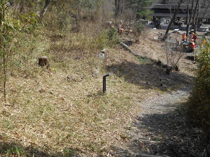 植樹予定地の整備(第一キャンプ場北側)