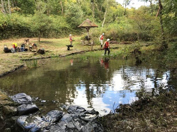 土壌を補強した池