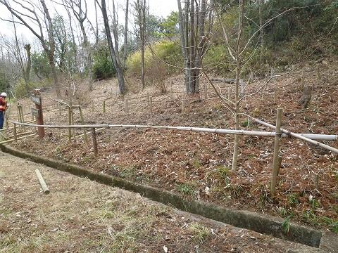 カタクリの森の竹柵の作業前