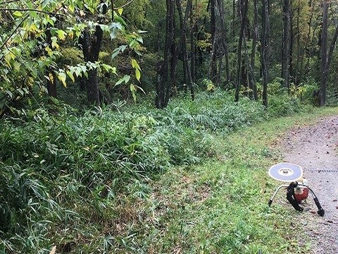 カタクリの森前方 作業前