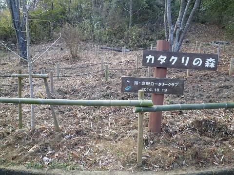 カタクリの森の竹柵の作業後