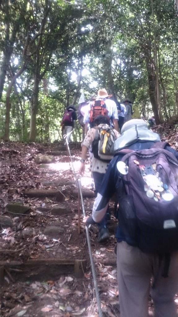 急斜面の山道を登ったところに・・・