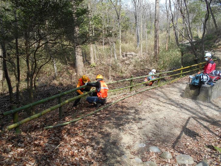 ミズバショウ生育地への侵入防止用の竹柵設置