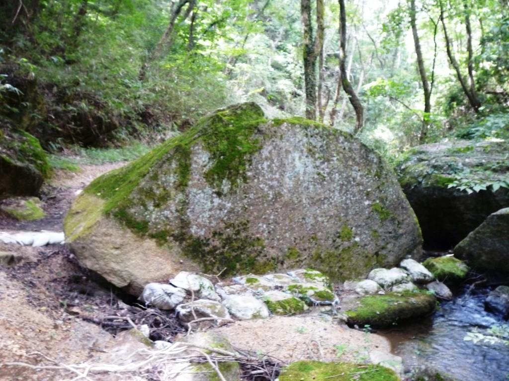 くろんど園地「ウサギ岩」 イヌ岩の手前にあります
