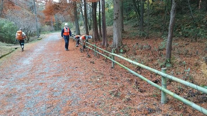 八ッ橋の竹柵補強
