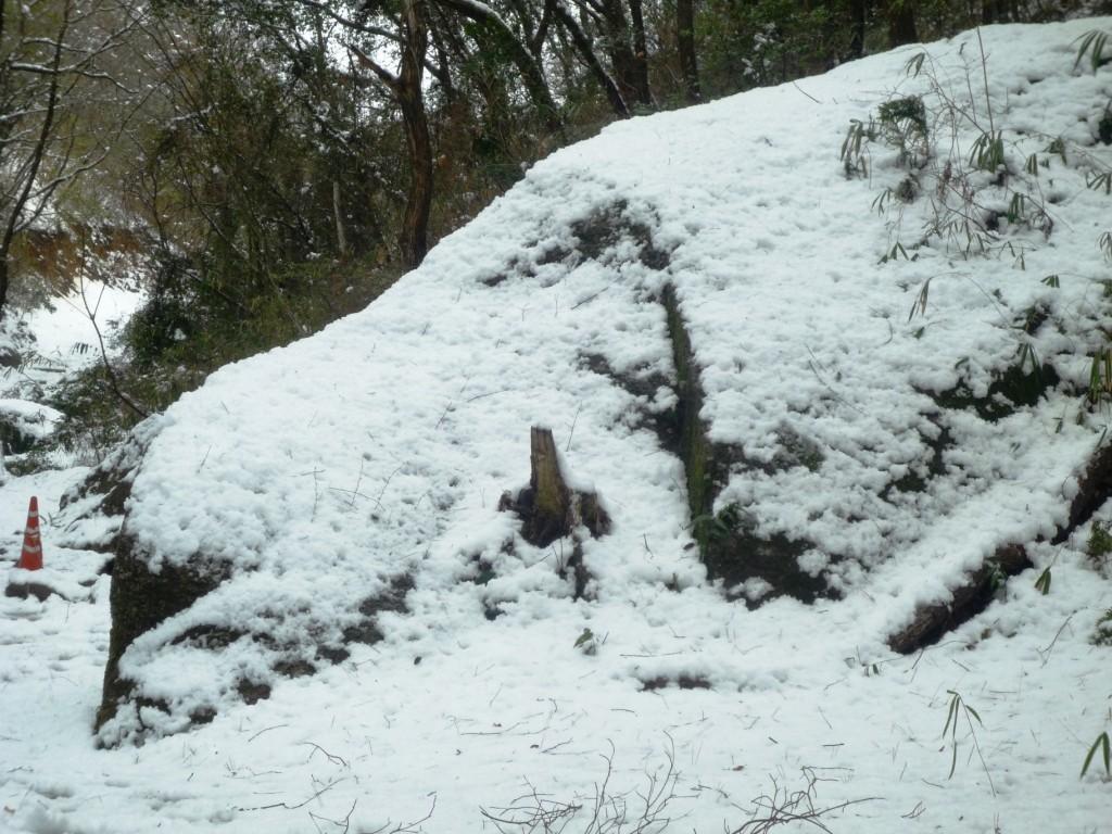 くろんど園地「白いイヌ岩」  冬に雪をかぶった犬岩です