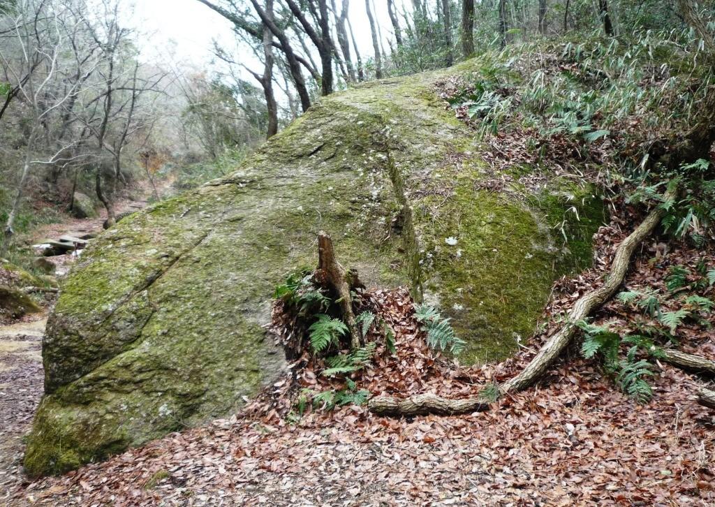 くろんど園地「イヌ岩」  この岩犬(リトリバー)の横顔に見えませんか?