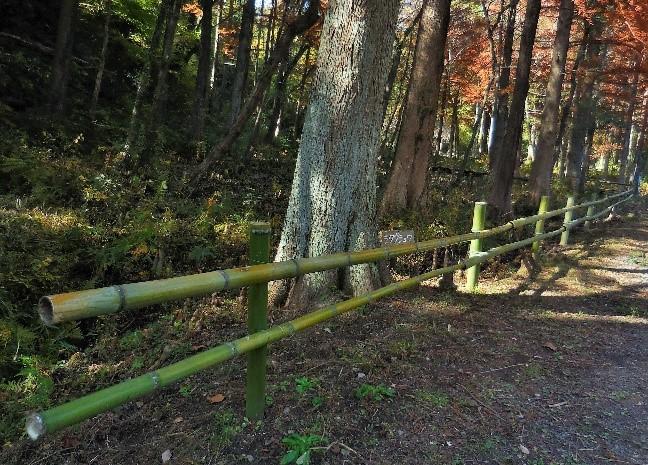竹柵作り作業後