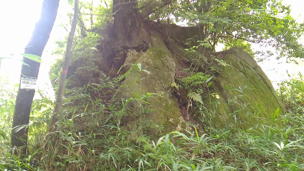 饒早日山(大きな岩)