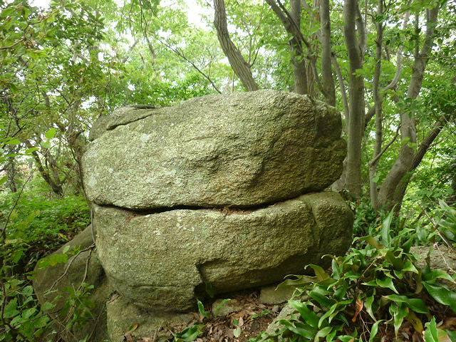 「ハンバーグ岩」。力を合わせたら岩を回せそう!?