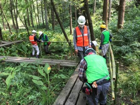 八ツ橋に竹柵設置作業