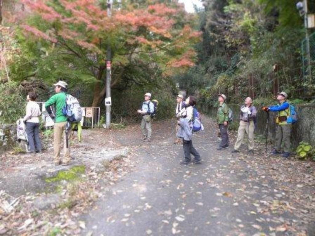下山後、紅葉を見てホッと一息
