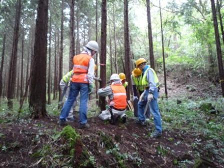 伐倒の講習