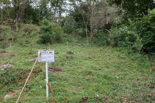森創りプロジェクト植林地 2