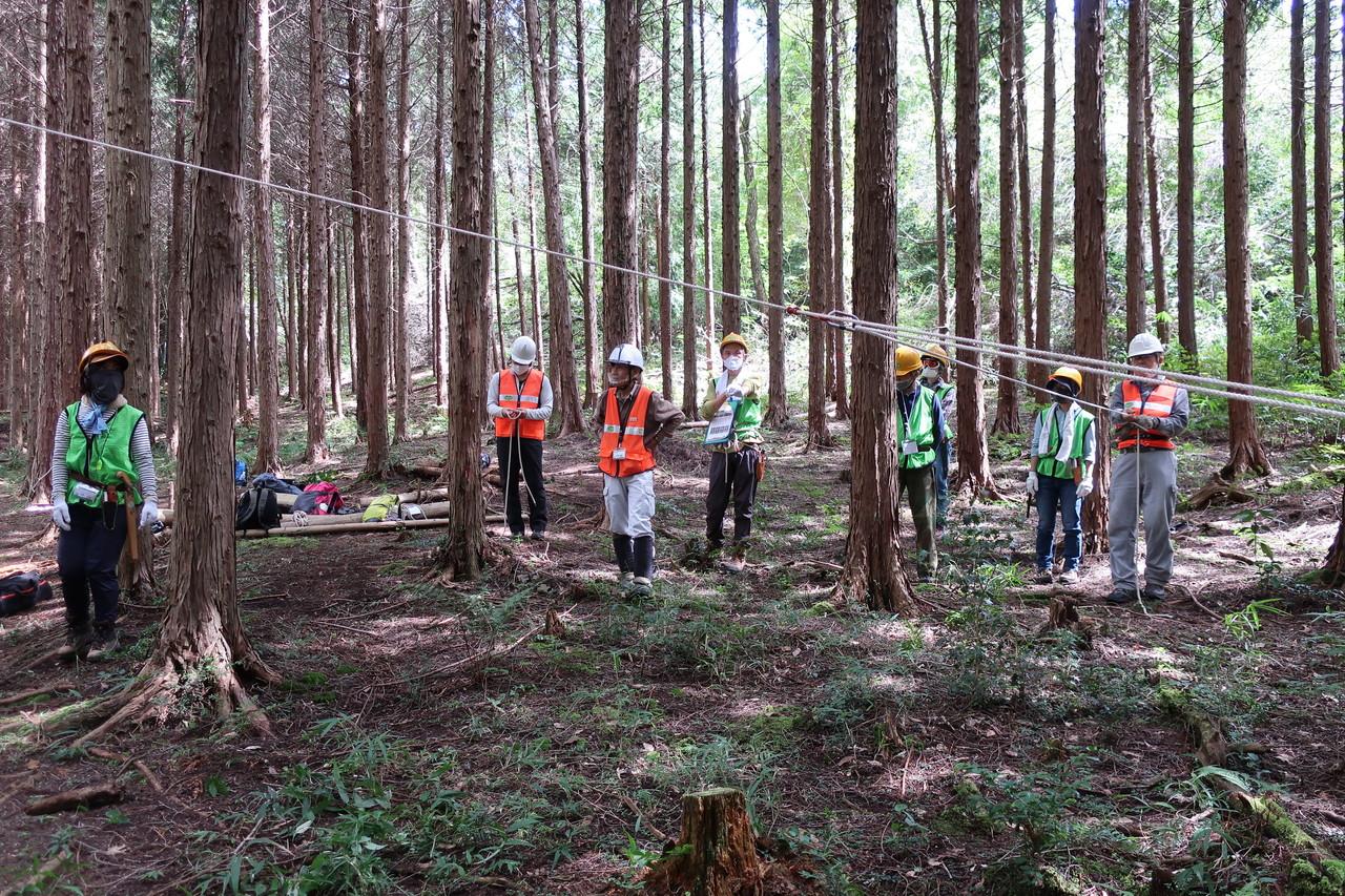 伐採体験 1