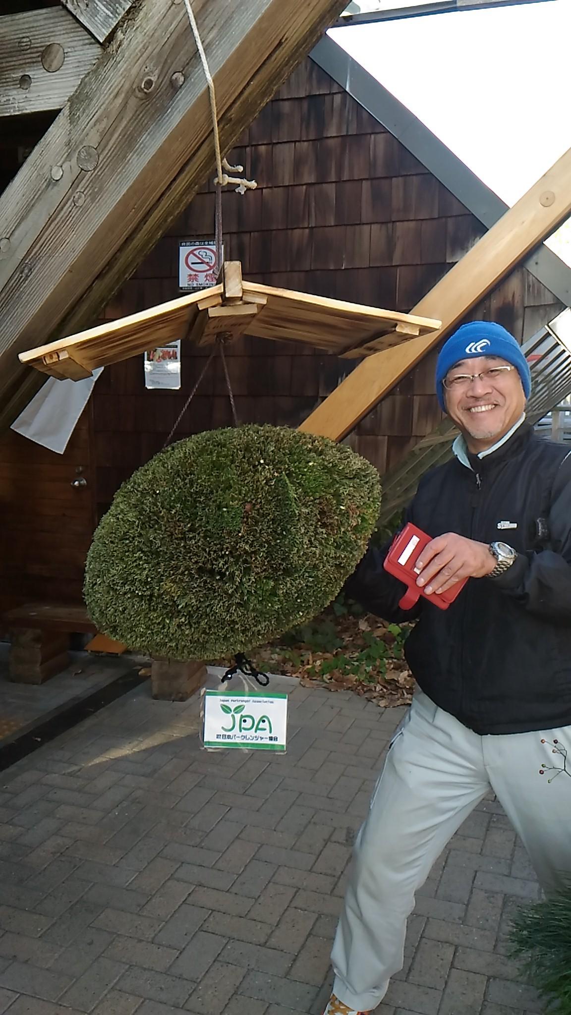 11月27日のラグビーボール型杉玉つくりからのリベンジ!見事完成しました!ラグビーボール型になってるでしょ!?