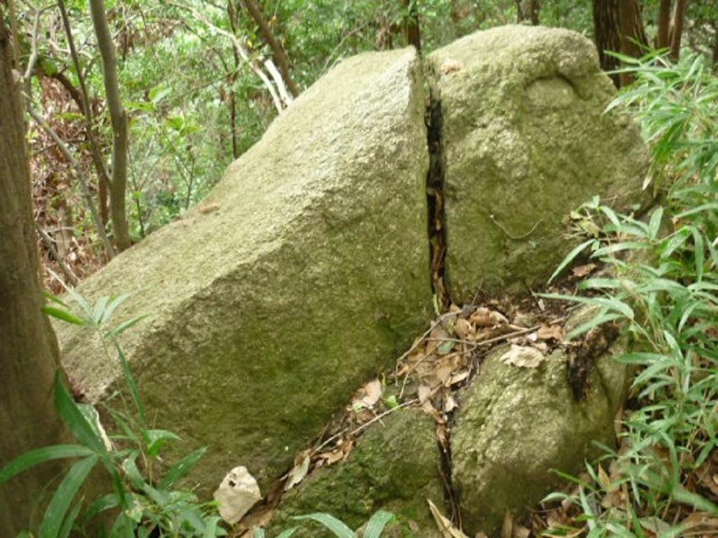 20200120_亀石