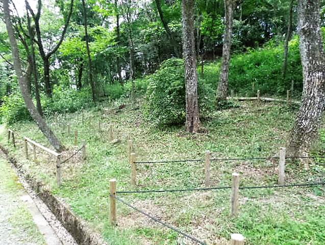 カタクリの森下草刈り実施後②