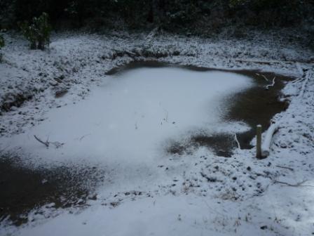 第2キャンプ場の池も凍結