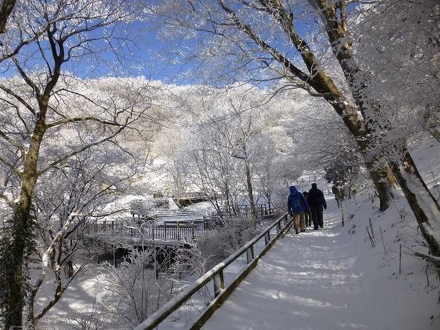 金剛山樹氷まつり