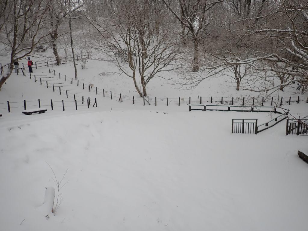 四季の谷も雪景色です。