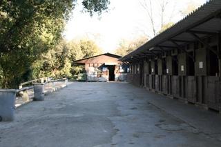 site du Centre Equestre de Villeneuve-Loubet
