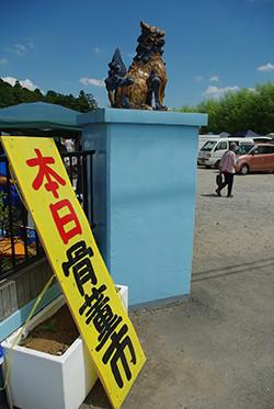 入口には沖縄のシーサーのような狛犬が・・・