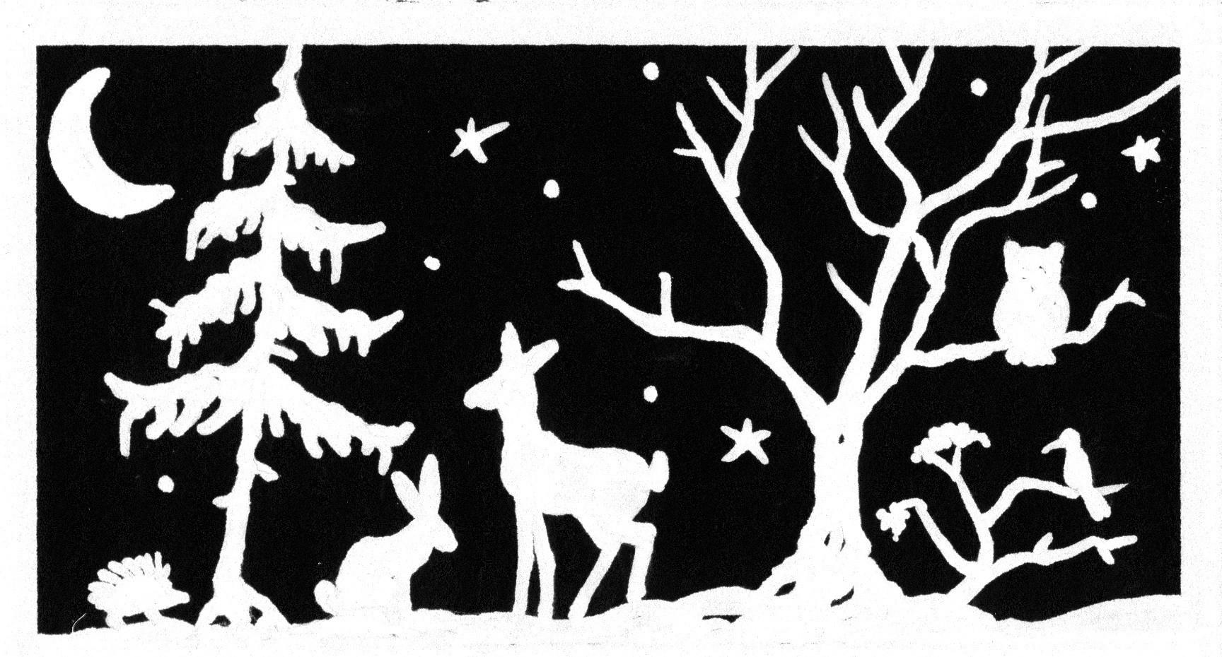 weihnachten im wald naturabilis nat rlich wunderbar. Black Bedroom Furniture Sets. Home Design Ideas