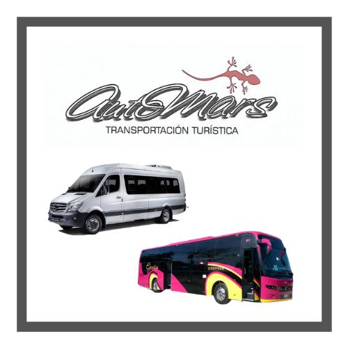 Renta de autobuses en CDMX Automars