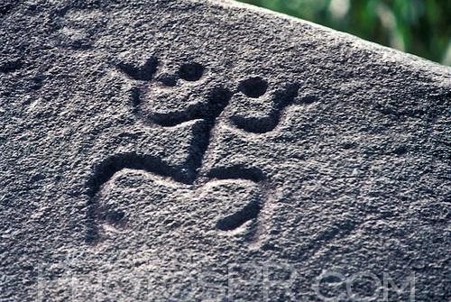 Frosch auf Stein gehauen (Piedra Escrita)