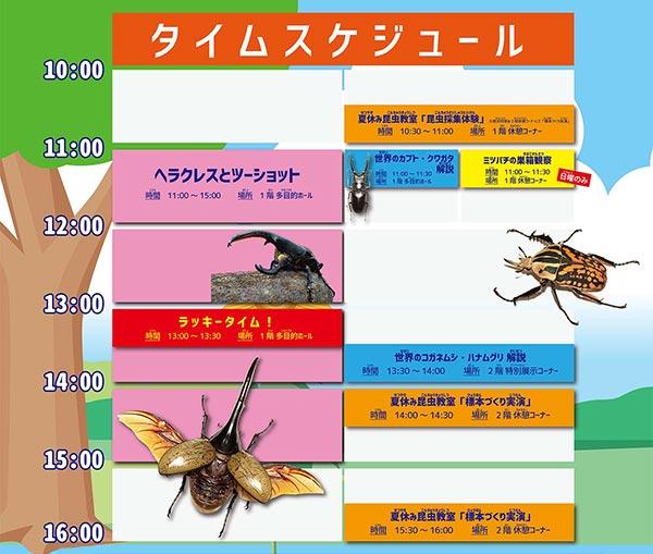 こん虫夏まつり2016~タイムスケジュール