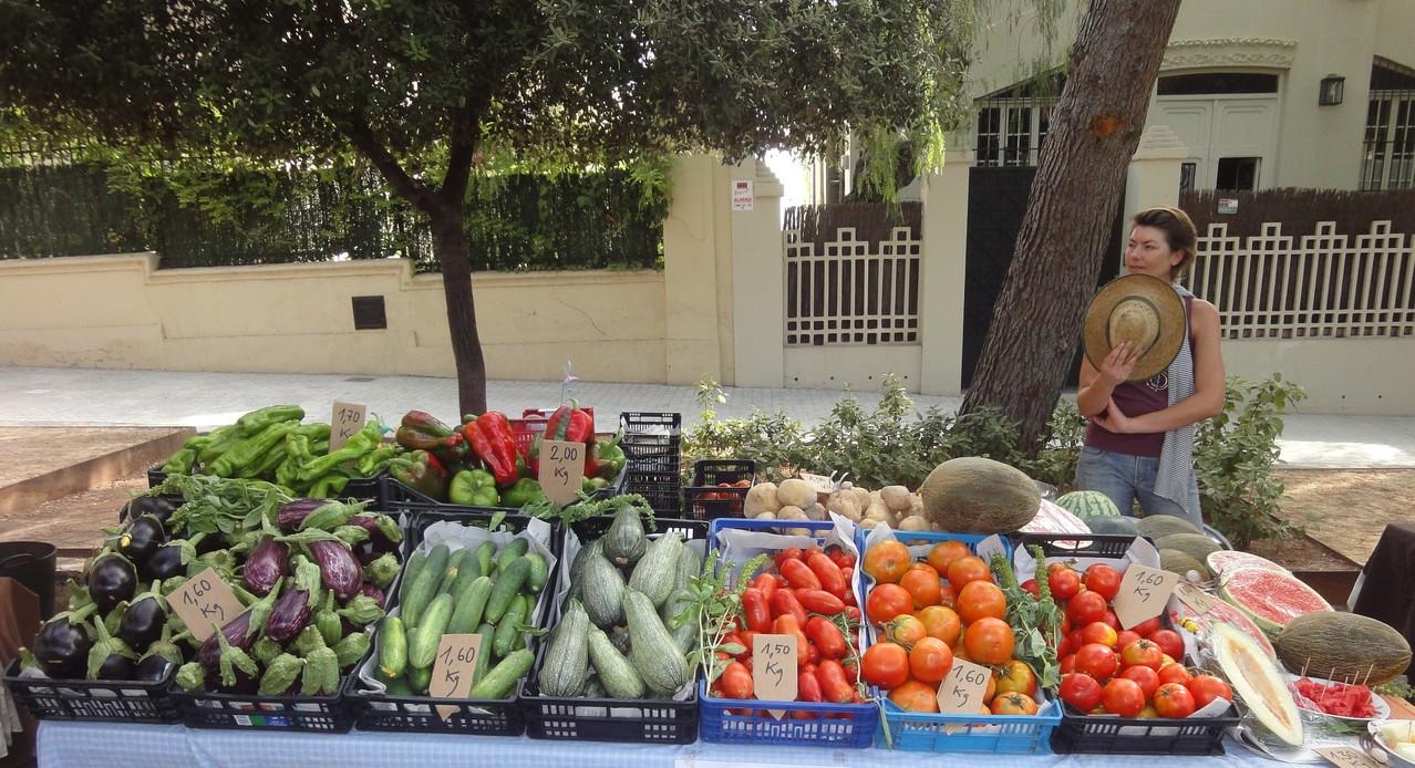 Cris, Menbre d'ecoturis&Lapebrella, es prepara per atendre als primers ecocompradors