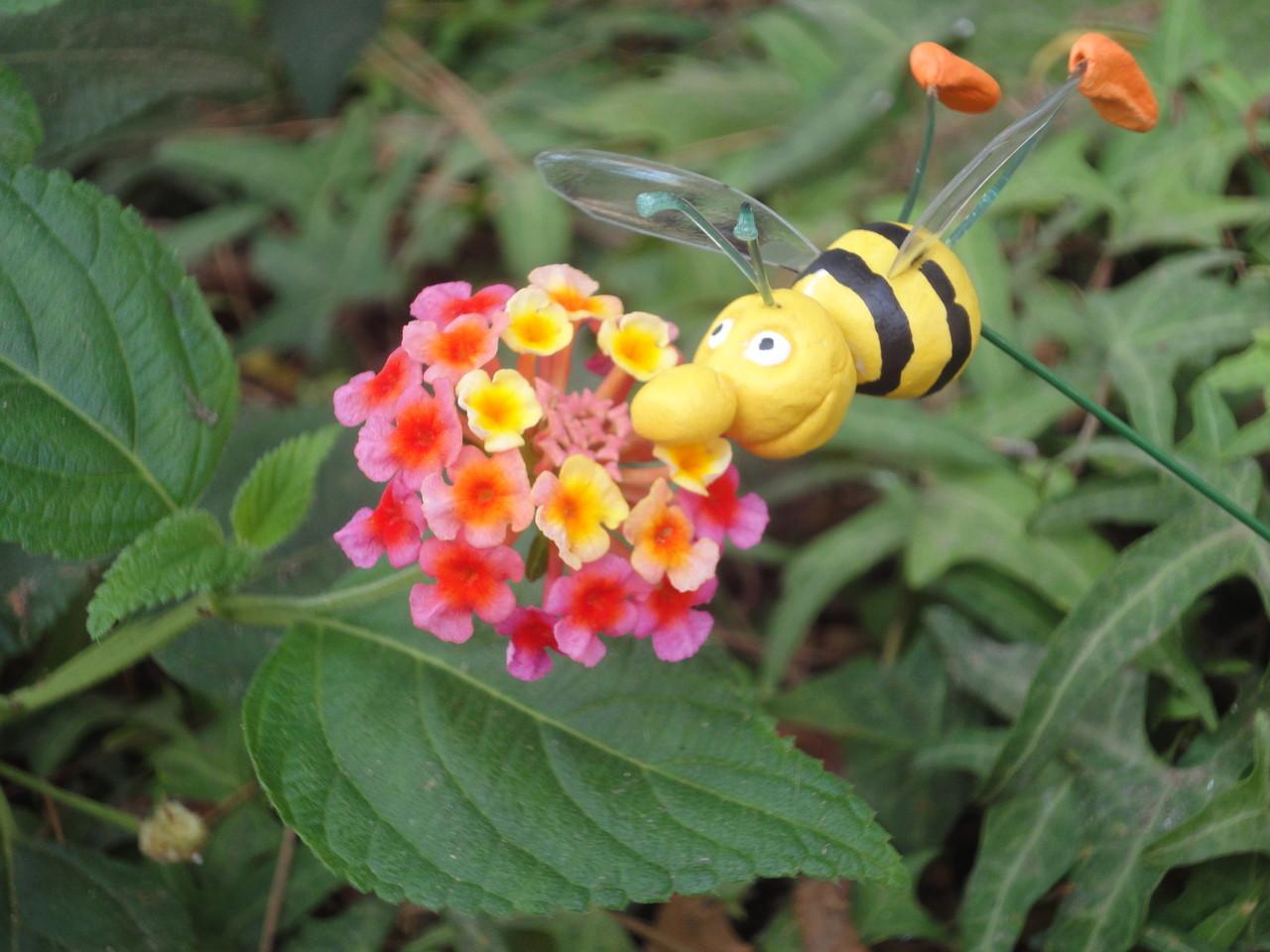 Per fi l'abella es posa a la floreta i ... continua el cicle de la vida