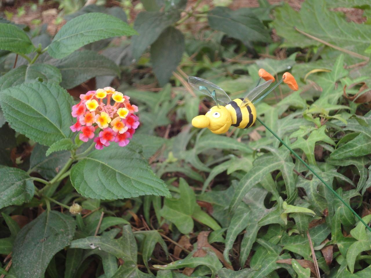 De bon de matí l'abella de Cris vola cap a les flors que hi ha al voltant del mercat