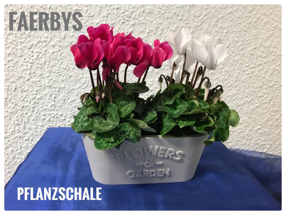 Pflanzschale Flowers & Garden Gussform Beton