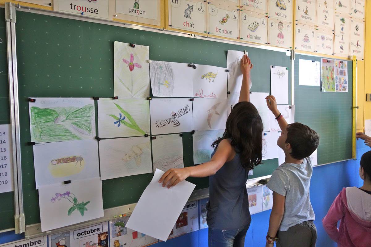 Projet de sentier nature du Vellan (école de Plan-de-Baix)