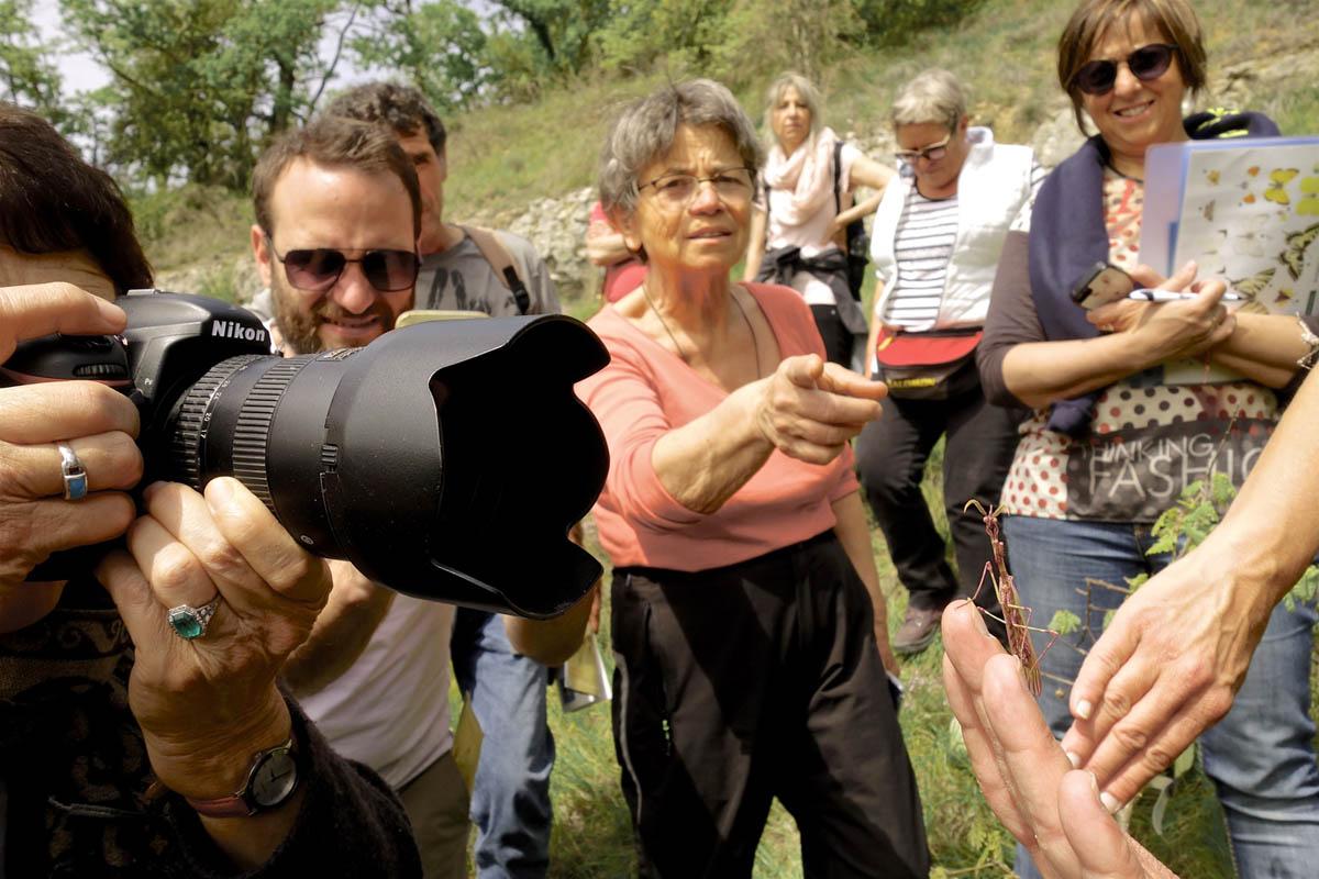 Formation pour les professionnels du tourisme, pelouses sèches et orchidées - Lysandra