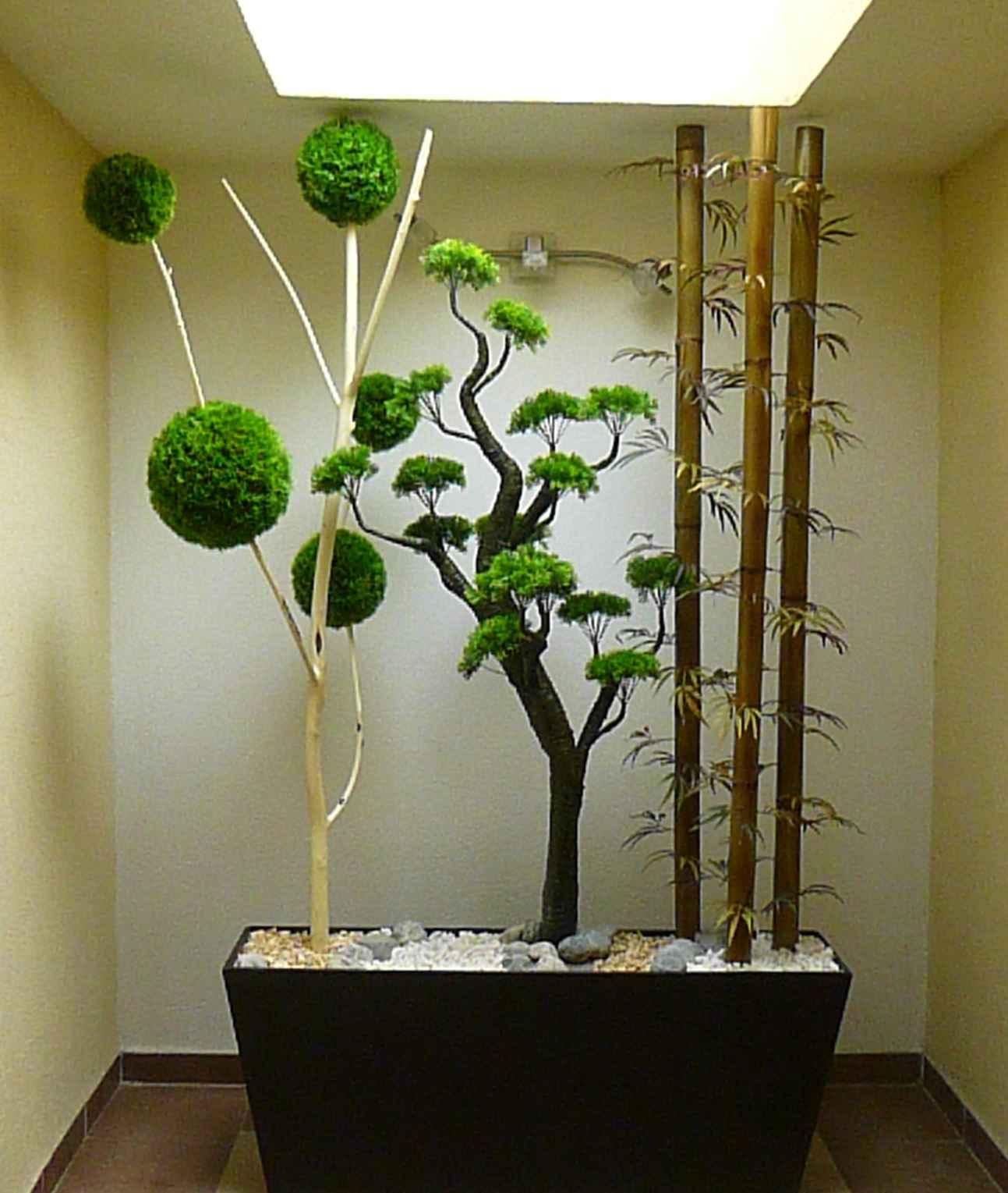 Naturaleza decorativa coyoacan natdeco coyoacan for App decoracion hogar
