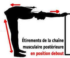 Etirements de la chaine musculaire postérieure debout