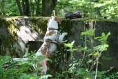 Auch in der höheren Ebene kann der Hund Apportiergegenstände suchen