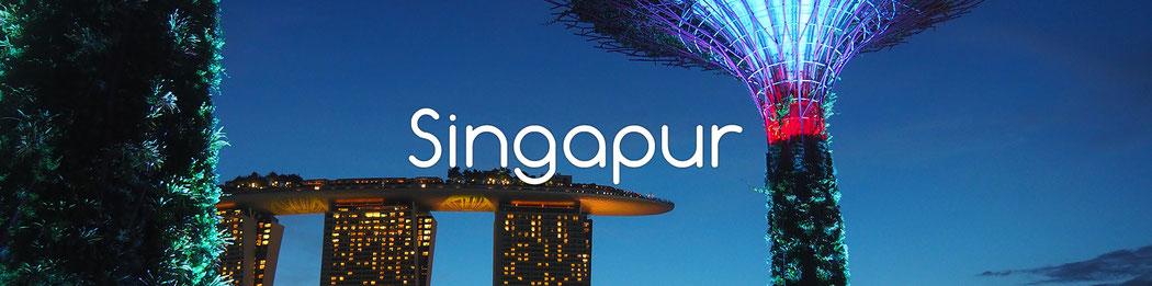 Radreise durch Singapure - Alles in 12 Taschen