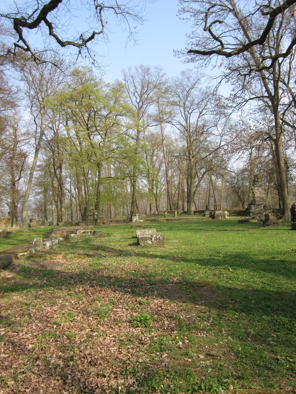Klosterruine Disobodenberg