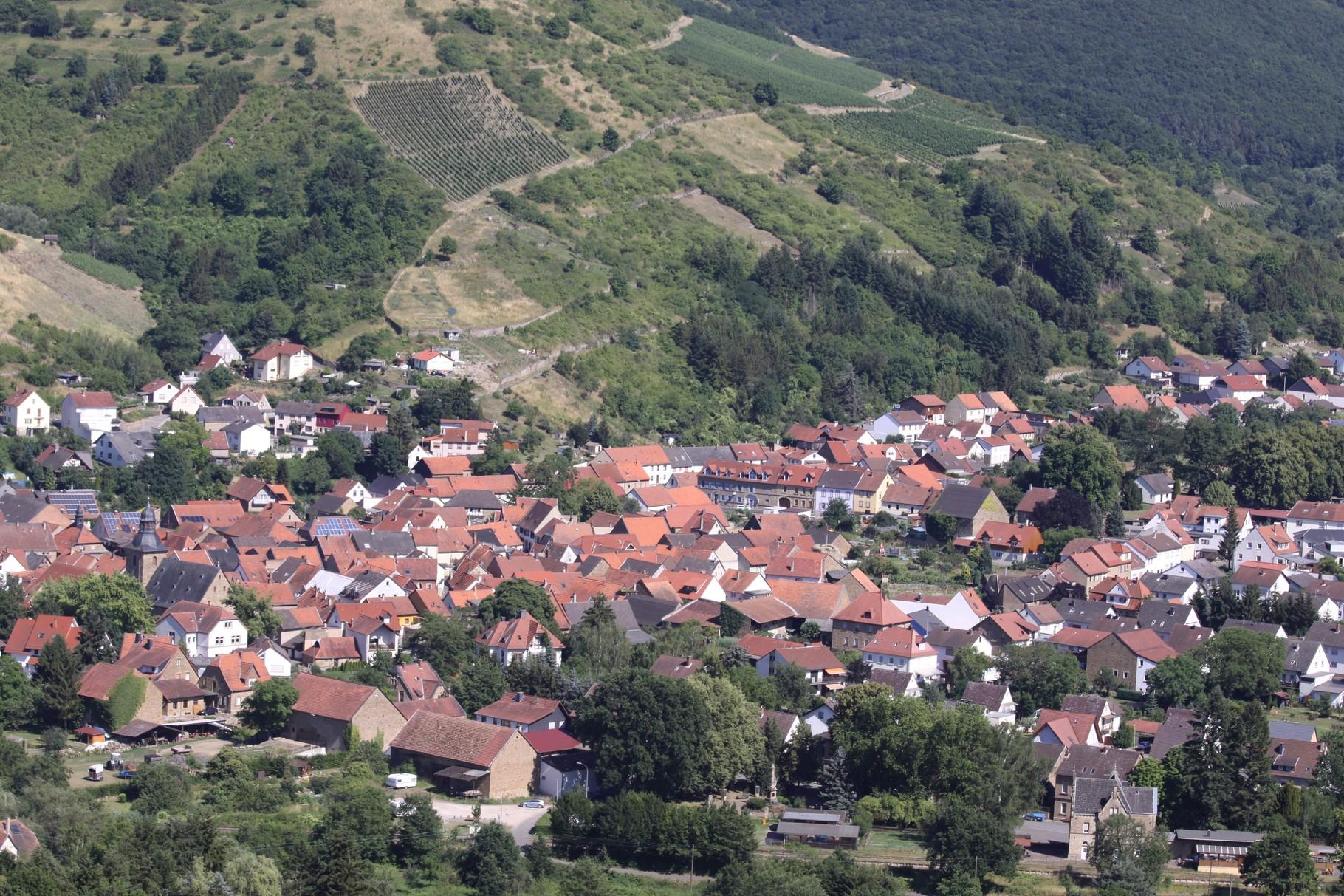 Weinwanderweg um den Langenberg