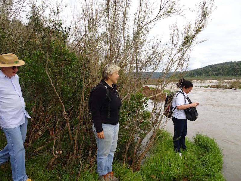 Der Rio Uruguay führt wieder viel Wasser Basaltspalte