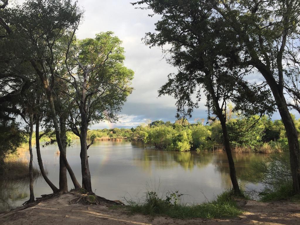 schwimmen mit Yacarés.... im Rio Riachuelo!