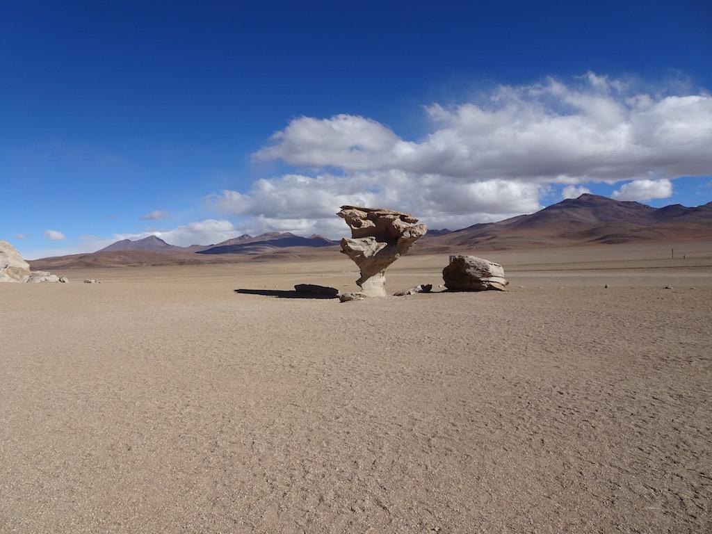 Arbol de Piedra und weitere vom Wind geformte Steine sind zu finden!