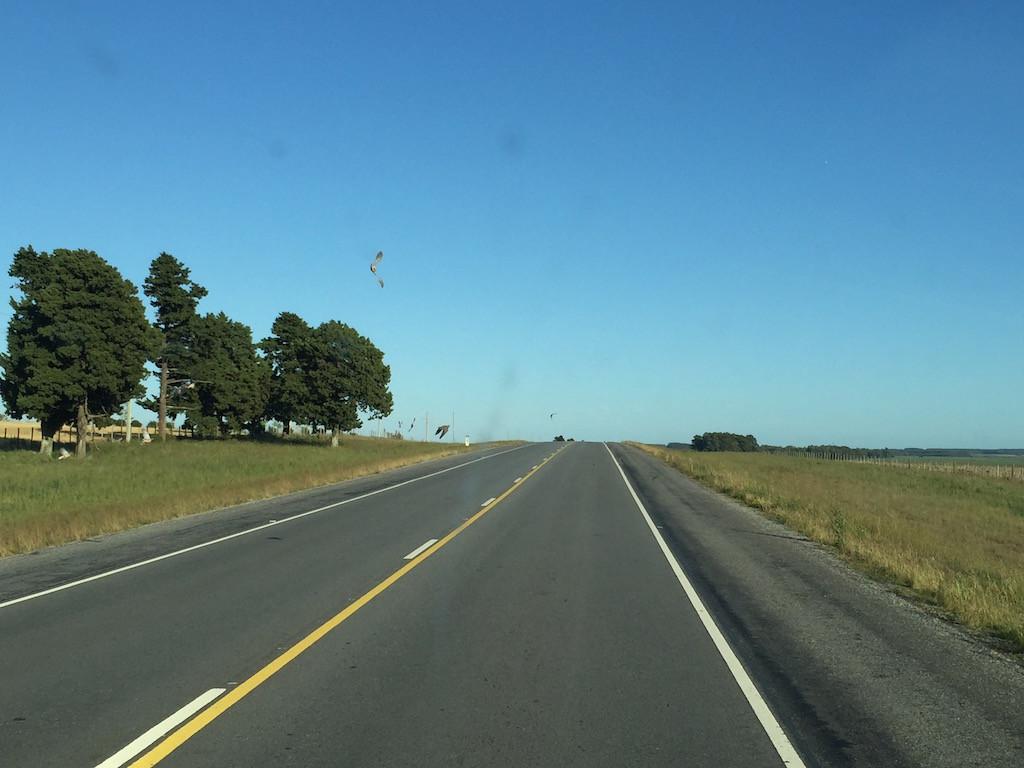 kilometerlange, gerade Strasse....