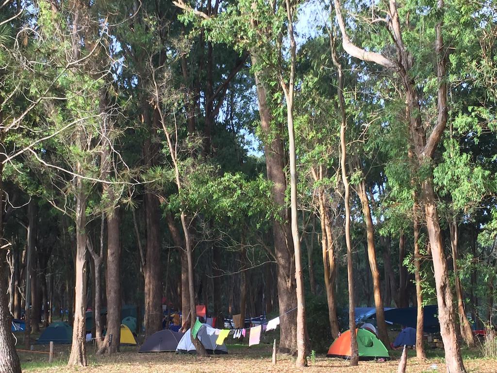 hunderte Igluzelte verteilt in den Eukalyptuswäldern