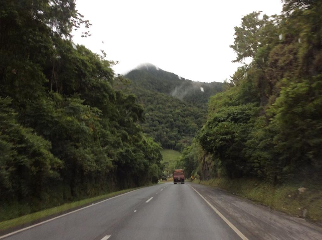 herrliches Gebiet, die Strassen führen mitten durch den Urwald