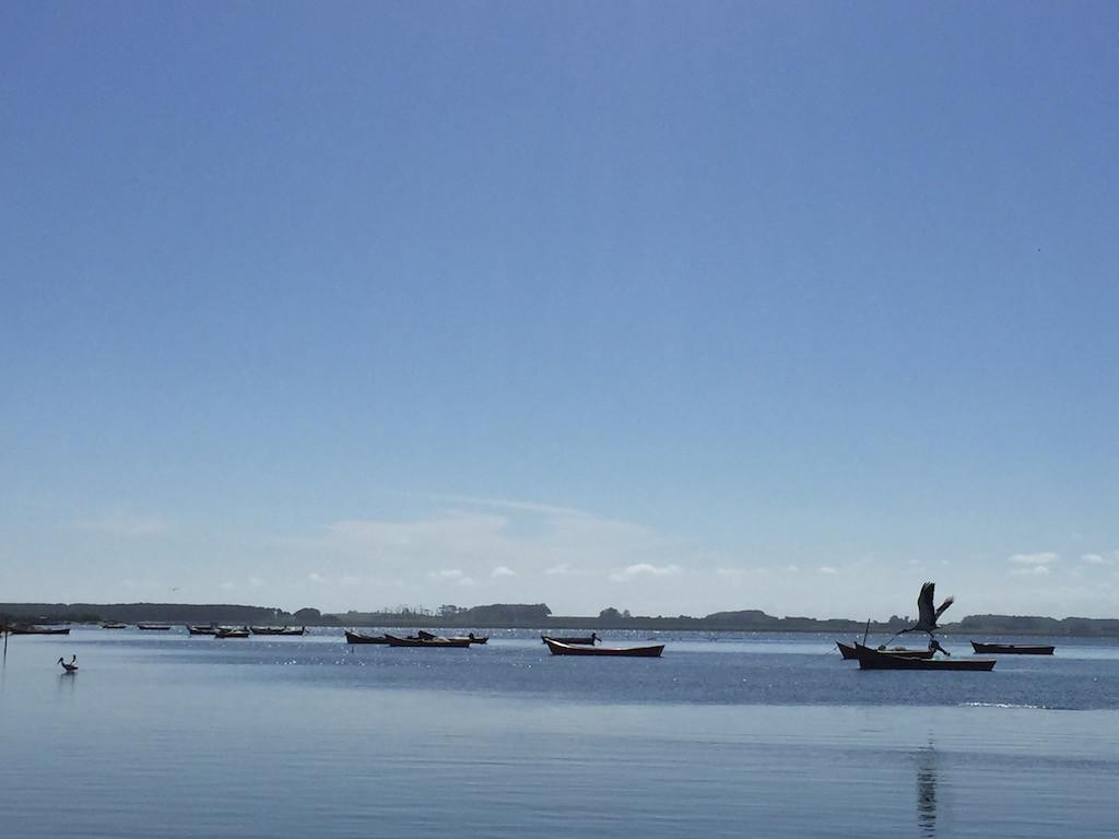 Silvesterschmaus aus dem Fischerboot